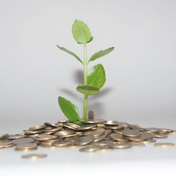 מהי התפתחות אישית ומדוע היא חשובה לצמיחה שלנו ושל העסק שלנו?